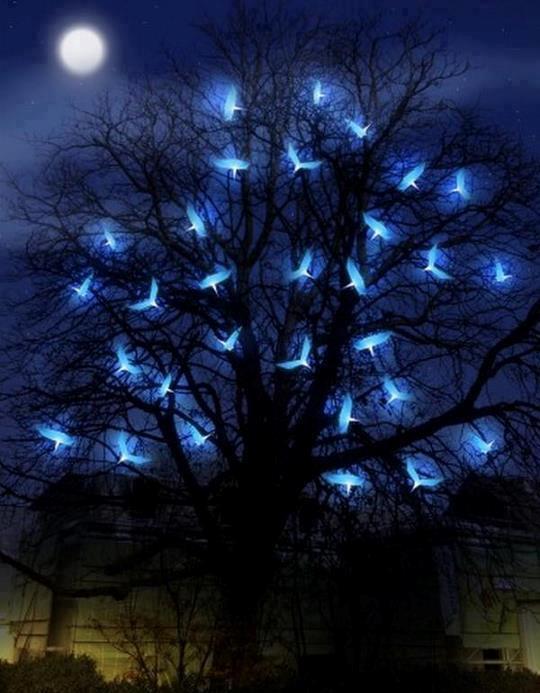 POEMAS SIDERALES ( Sol, Luna, Estrellas, Tierra, Naturaleza, Galaxias...) - Página 3 121117_arbol-y-pajaros-luminosos-en-la-noche_un-mundo-magico