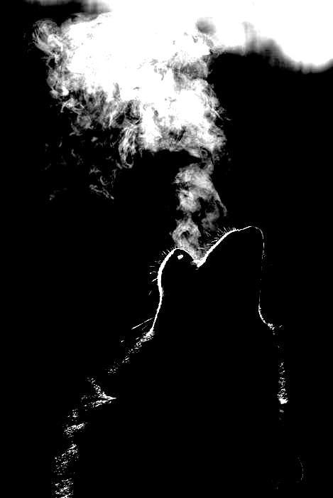 """Poema: La espuma del cielo, de Carlos Morales; Libr. de Referencia: Carlos Morales, """"Salmo"""", Col. «Cuadernos del Mediterráneo», Ed. El Toro de Barro, Tarancón de Cuenca, 2005."""