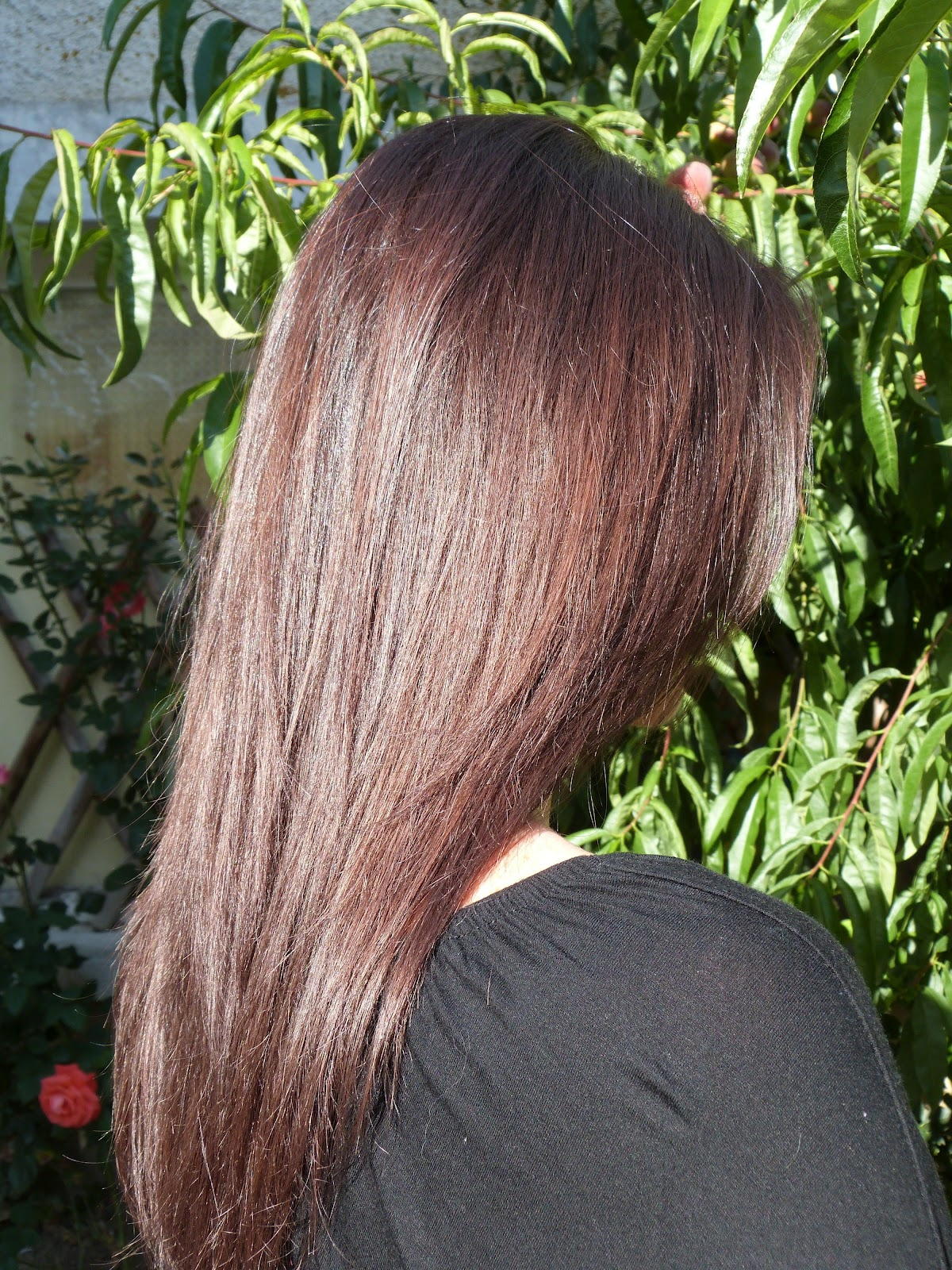 Coloration cheveux gloss chocolat