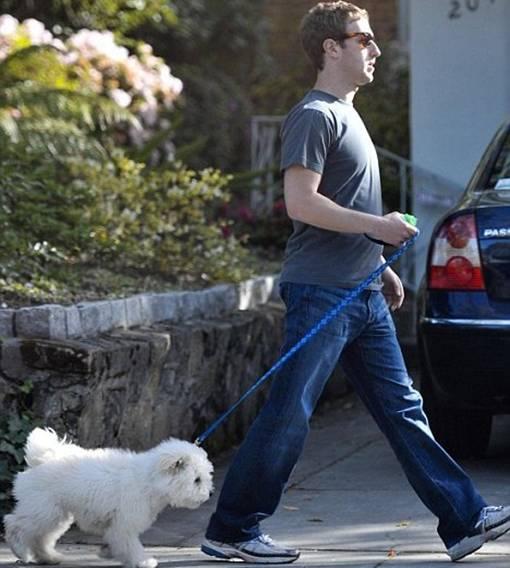 FaceLeakz - Kisah Mark Zuckerberg Pendiri Facebook dan Anjing Peliharaannya Bernama Beast