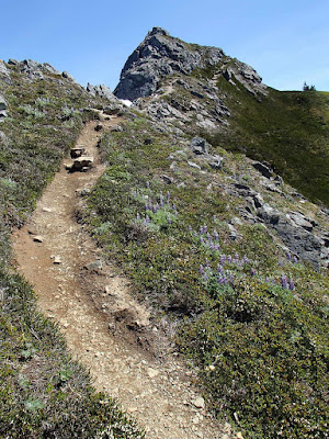 Steep trail up to Gastineau Peak