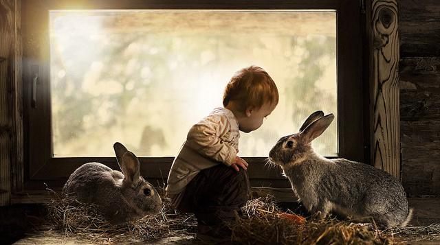 Madre Rusa toma imágenes mágicas de sus dos hijos con animales en su granja