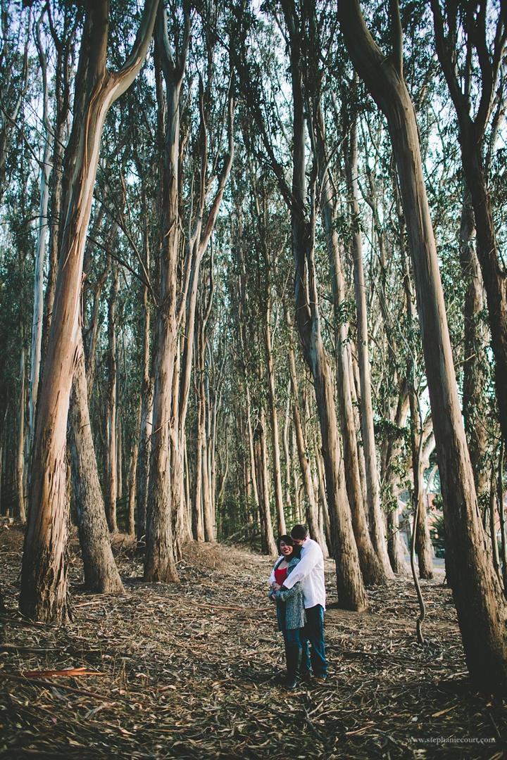 """engagement photos at the Presidio"""
