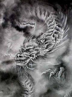 天ヤンのドラゴン