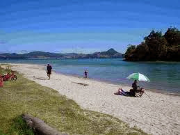 Purangi-Estuary-Cooks-Beach