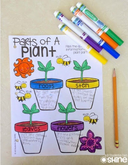 Some kids chose to write only adjectives and others wanted to write  sentences about plants. We walked around the room showing our peers our  awesome work.