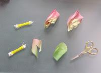 stamens+and+petals.JPG