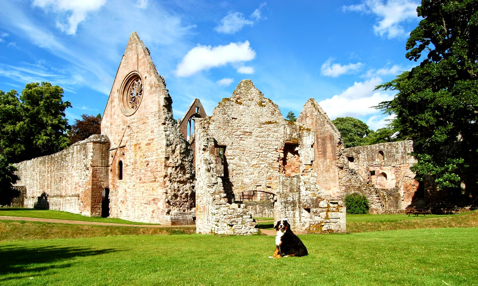 Back of Dryburgh Abbey