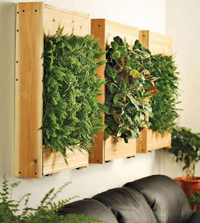 decorar paredes con jardin vertical