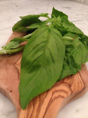 basil, organic basil, salad recipe, basil salad