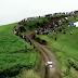 FIA ERC SATA Rallye Açores 2014 - Batalha pela liderança.