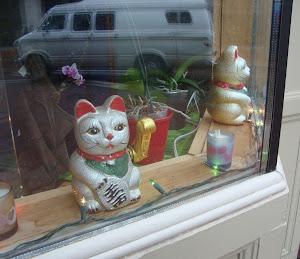 [ moncton cats ]