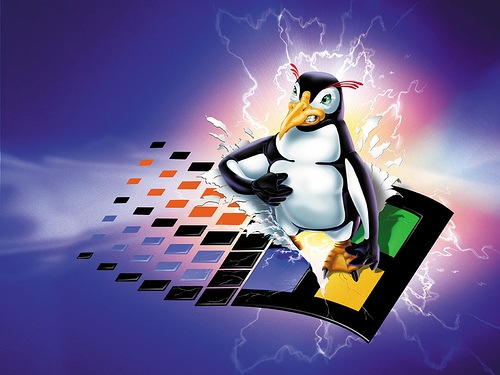 Difference Between Linux and Windows Dedicated Servers