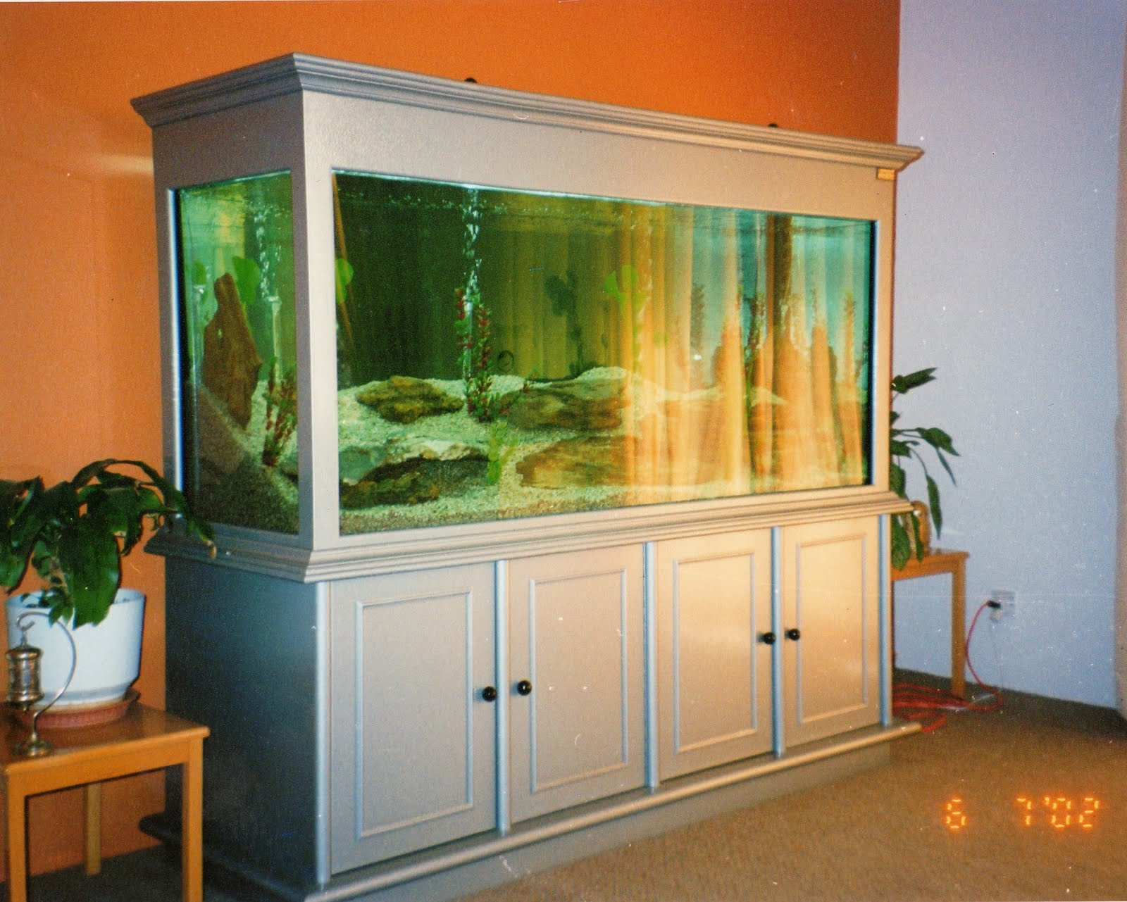 Fish aquarium karachi - Rectangle Shape Aquariums