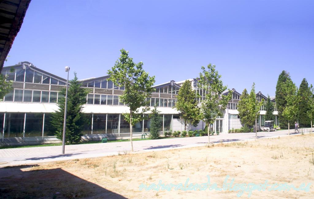 vista general palacio arganzuela