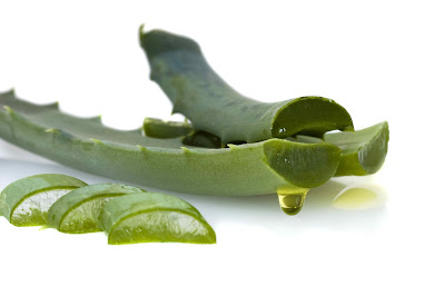 Just One Daily Tablespoon of Aloe can Reverse Aging