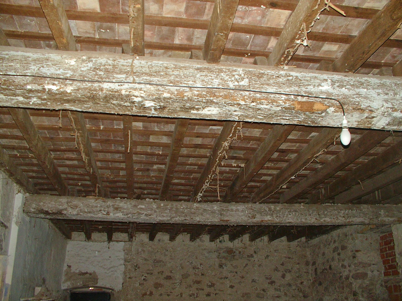 Arte de cuidar la madera tratamiento en estructuras - Tratamiento carcoma madera ...