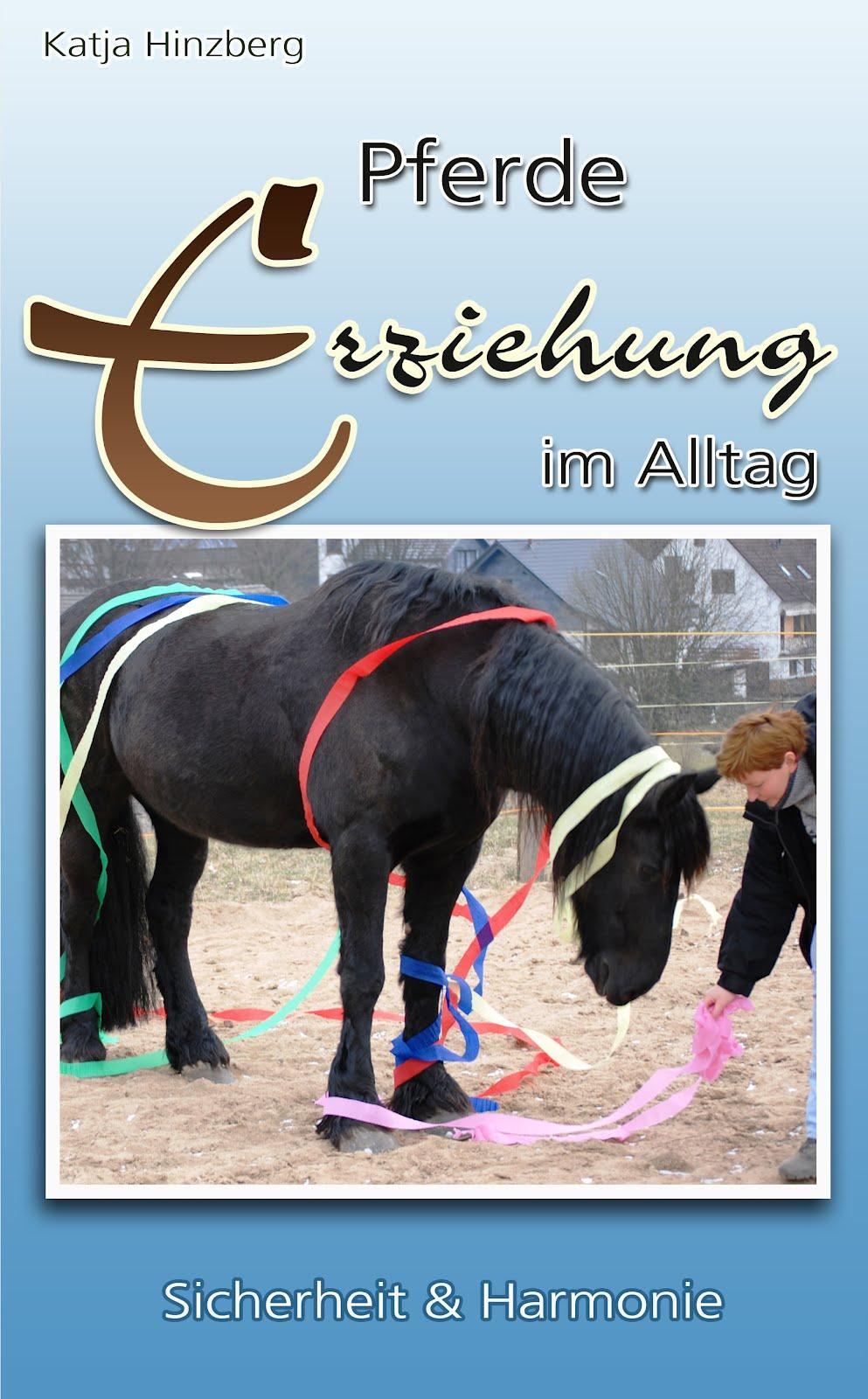 richtige erziehung pferd