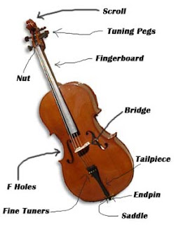 The Parts of Cello