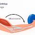 Treinamento muscular excêntrico na Fisioterapia Esportiva