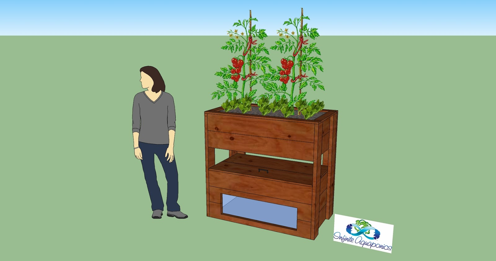 Aquaponics Designs Diy