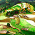 Mu Cang Chai, Hoang Su Phi - Golden Season On Plateau