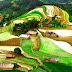 Mu Cang Chai, Hoang Su Phi - Golden Season On Plateau