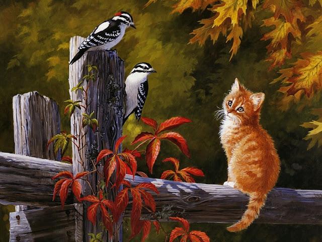 рыжик котёнок сидит на заборе