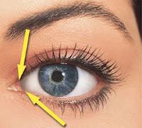 plica semilunaris coltul ochiului