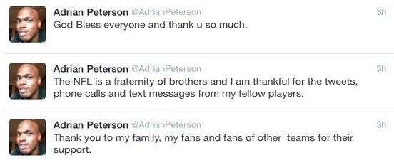adrian peterson essay