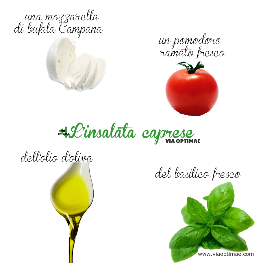 Gli ingredienti dell'insalata caprese: mozzarella, pomodoro, basilico, olio d'oliva, ingredients of Caprese Salad by Via Optimae, www.viaoptimae.com