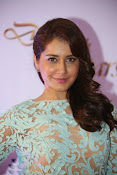 Rashi Khanna at Dinner with Stars-thumbnail-1