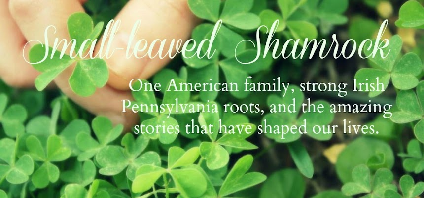 Small-leaved Shamrock