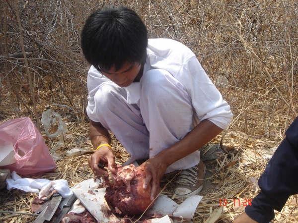 Chinese people eating black man
