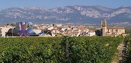 El Ciego, Rioja Alavesa