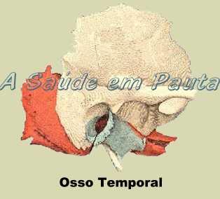 O Osso Temporal é um osso irregular, não equivale a nenhuma forma geométrica conhecida