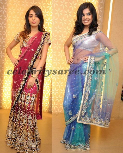 Kalanikethan Saris for Reception