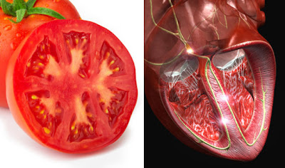 Foods That Resemble The Body Parts They Benefit - funny and hot pictures
