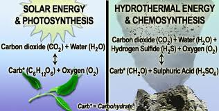 chemosynthesis process organisms manufacture 6 days ago during the 20th century, comparisons between photosynthetic processes in green plants and in certain photosynthetic sulfur bacteria provided important information about the photosynthetic mechanism sulfur bacteria use hydrogen sulfide (h2s) as a source of hydrogen atoms and produce sulfur instead.
