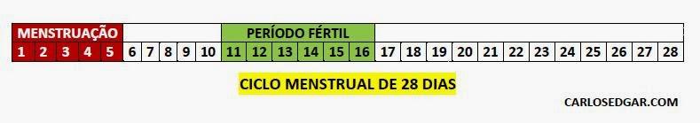 Ciclo menstrual de 28 dias.