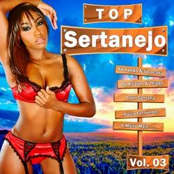 Top Sertanejo Vol.03