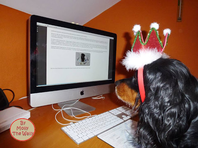 Molly The Wally Does Snoopys' Book Review 3!