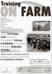 Training On Farm (TOF) / Edu Farm