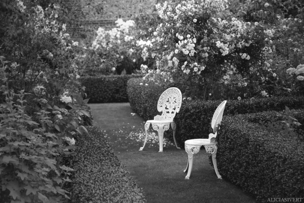 aliciasivert, Alicia Sivertsson, France, Normandy, Les Jardins d'Angelique, garden, gardens, flowers, roses, rose, chairs, chair, Frankrike, Normandie, trädgårdar, trädgård, blommor, rosor, ros, stolar, stol