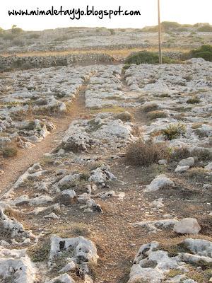 Cart Ruts en Malta