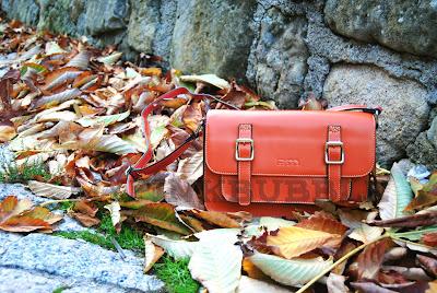 Bolso satchel