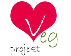 Vegprojekt - blog