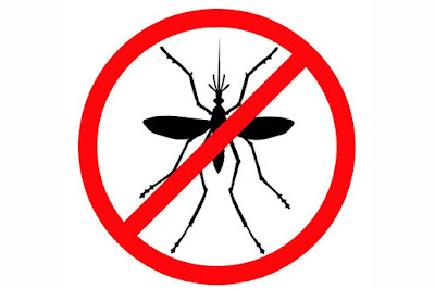 imagen  repelentes caseros para mosquitos
