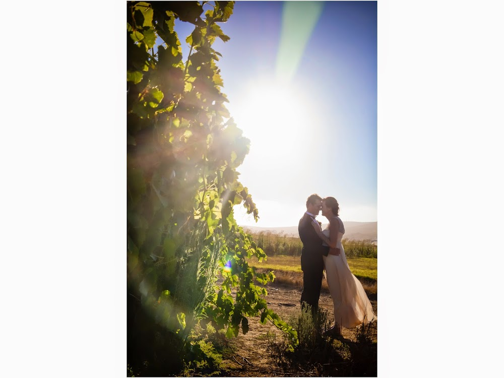 DK Photography last+slide-60 Ruth & Ray's Wedding in Bon Amis @ Bloemendal, Durbanville  Cape Town Wedding photographer