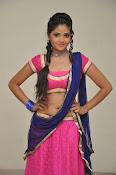 Shreya Vyas photos at Bengal Tiger audio-thumbnail-19